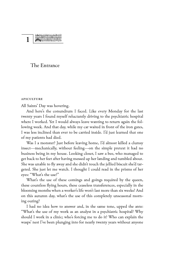 mother folly a tale franoise davoine translated by judith g miller with a preface by mieke bal