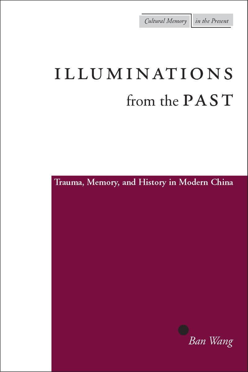 memory trauma and history essays on living with the pas Memory, trauma and history intersects with the history of medicine, with trauma studies and psychoanalysis, with questions concerning postmodernism and politics, and with issues concerning photography and historical consciousness.