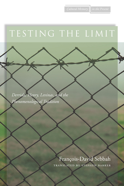 Cover of Testing the Limit by François-David Sebbah Translated by Stephen Barker