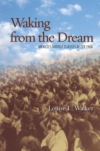 Cover of Waking from the Dream by Louise E. Walker