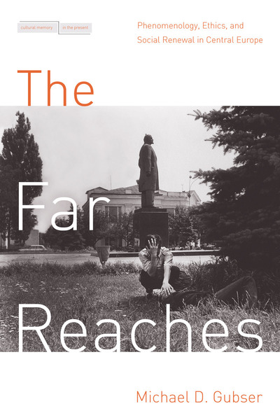 Cover of The Far Reaches by Michael D. Gubser