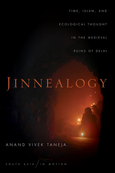 Cover of Jinnealogy by Anand Vivek Taneja