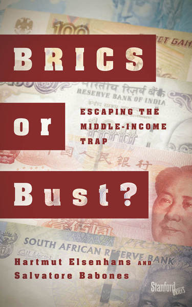 Cover of BRICS or Bust? by Hartmut Elsenhans and Salvatore Babones