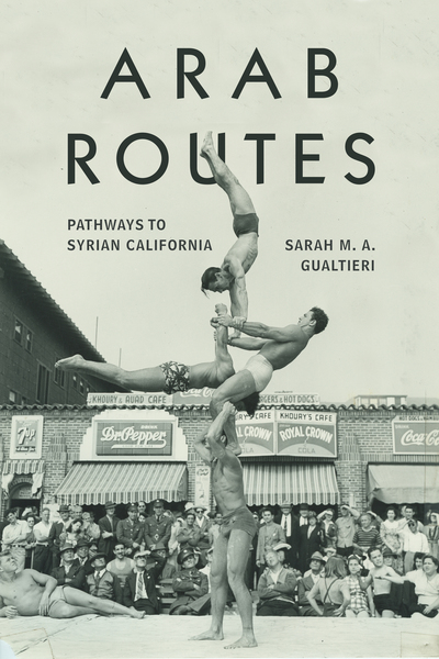 Cover of Arab Routes by Sarah M. A. Gualtieri