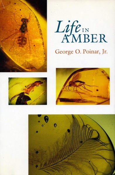Cover of Life in Amber by George O. Poinar, Jr