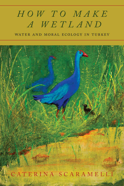 Cover of How to Make a Wetland by Caterina Scaramelli