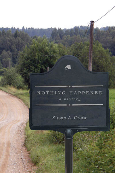 Cover of Nothing Happened by Susan A. Crane