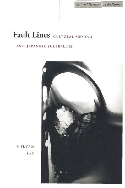 Cover of Fault Lines by Miryam Sas