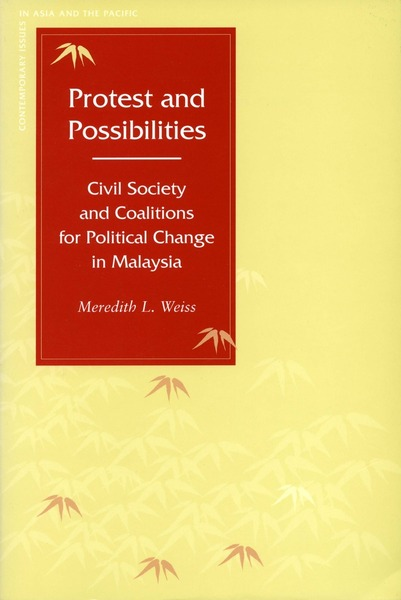 Cover of Protest and Possibilities by Meredith L. Weiss