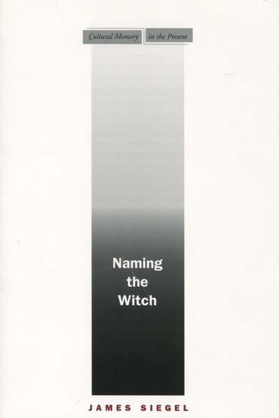 Cover of Naming the Witch by James Siegel