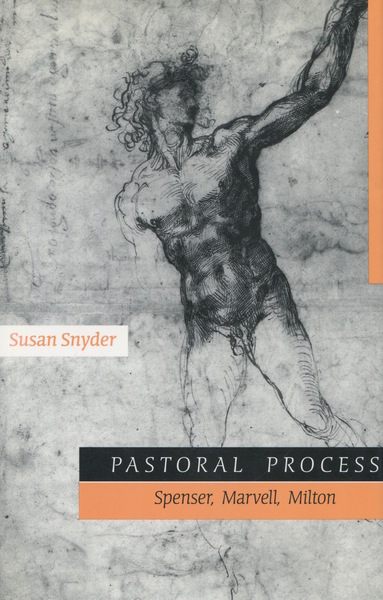 Cover of Pastoral Process by Susan Snyder