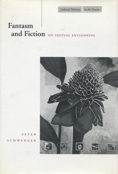 Cover of Fantasm and Fiction by Peter Schwenger