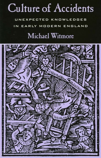 Cover of Culture of Accidents by Michael Witmore
